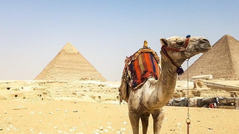 Tour Egipto
